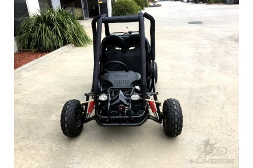 90cc Offroad Dune Buggy Quad ATV Teen Twin Seat Gokart Kids Under 12yrs 110/125