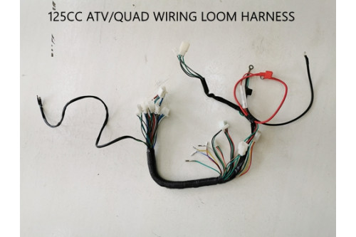 Electric Start Wiring Harness Loom 50cc 110cc 125cc QUAD DIRT BIKE ATV  Buggy - MJMotor