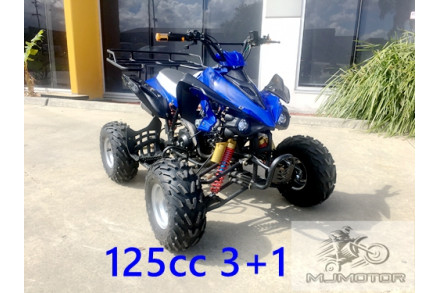 125CC ATV Sport Quad Dirt Bike 4 Wheel Buggy Go kart Rear Rack Semi Auto 3+1