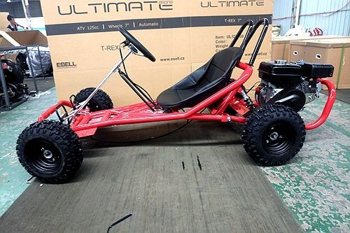200CC 6.5HP Go Kart Dune Buggy QUAD 4 Stroke Upgraded Adult/Kids Sizes