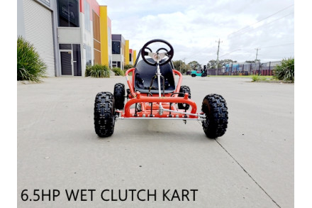 200cc 6.5HP Go Kart Wet Clutch Dune Buggy ATV Quad 4 Stroke Adult/Teen/Kid Sizes RED