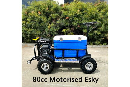 80cc Motorised Cooler Scooter 4 Wheel Motorbike Atv Quad Icebox Esky Lifan