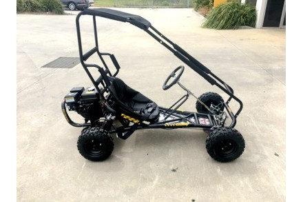 200cc 6.5HP Go Kart Wet Clutch Dune Buggy ATV Quad 4 Stroke Top Roll Cage